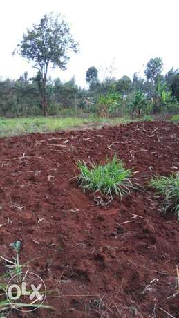 1/4 acre plot(land) for sale in,Mutuini area Near LENANA school Dagoretti - image 2
