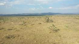 11 acres in Nanyuki, Kariunga at 500k per acre