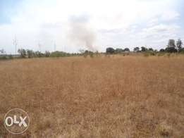 Thika Prime Plots on offer