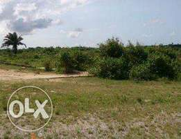 Affordable land in ibeju lekki