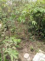 1 & Half Plots Of Land for Sale At Rumuchiorlu Eneka Portharcourt