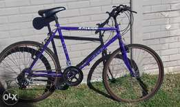 Raleigh Hawk 10 speed bicycle for sale