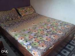 Favorite bedsheet-100% organic cotton