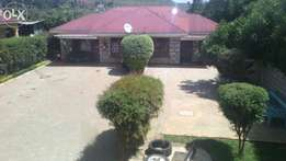 1 bedroom furnished to let at ksh. 2000per day