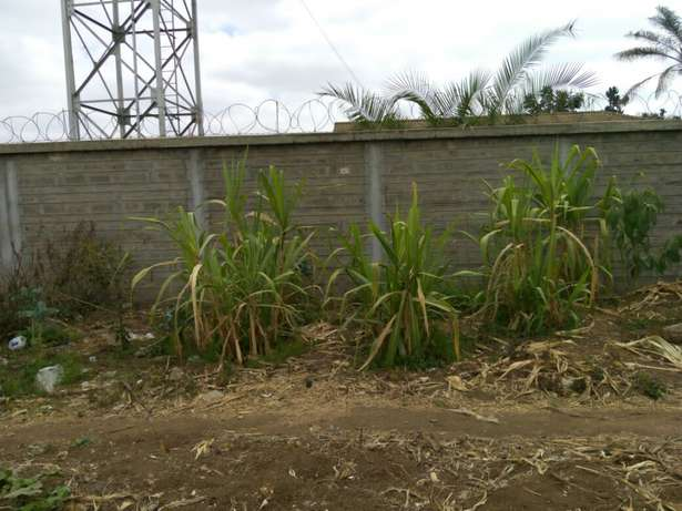 lands,plots and properties agent Limuru Town - image 4