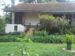 4 bedrooms bungalow to let in new muthaiga.