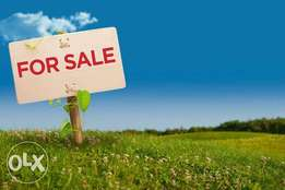 Selling, Leasing or Buying Land or a House?