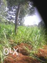 land Sale of 100by100 at MUTUNDURI secnd from the tarmac opp.Evalyn ac