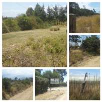 2 acres in Muriru, Naromoru at 3m