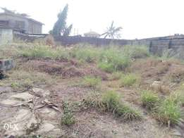 Affordable 500 square meters land for sale at oyemekun agege