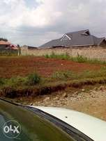 40*60 extremly good plot murera 650k