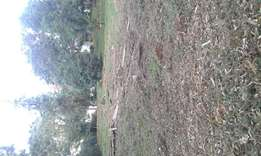 Kitisuru clean 1/2 acre plot for sale