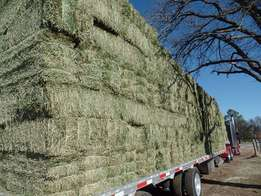 Med Round Hay Bales available