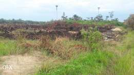 acquire Land from Cedarwood Estate phase 3 and enjoy 150% Invet return