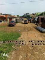 Commercial one and half plot along Lasu Iba rd For Sale