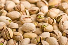 100% Raw Pistachio Nuts