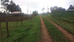 Limuru Ngarariga 100X100 Plot for sale near Highway at Ksh 2.3 M