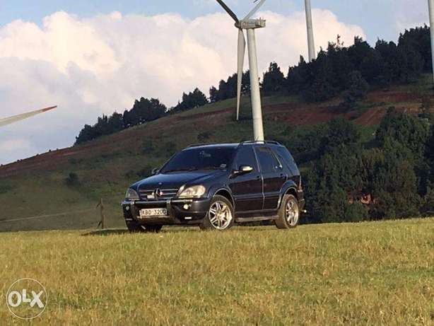 Mercedes Benz ML320 Woodly - image 3
