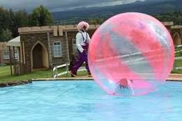 Zorb ball mascots puppet show for hire