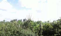 5 acres for sale at nakuru ngata -teachers at 2m per acre