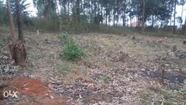 63x40 plot entebbe