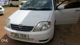 Corolla in perfect condition buy and drive on sale