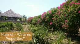 Half an Acre Plot FOR SALE in Malindi