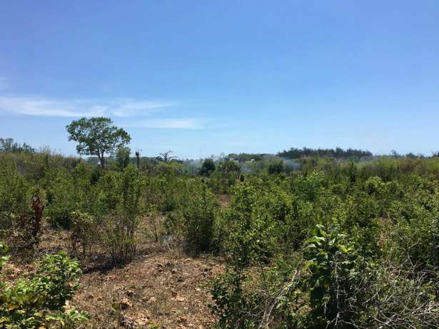 Two parcels each measuring 2.25 acre diani, one on 3rd row and one 4th Miritini - image 1