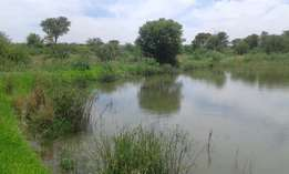 1.5ha Plot with dam on property - 17km from Koppies Freestate