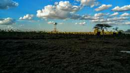 One Acre Parcels of Land Overlooking Nairobi National Park