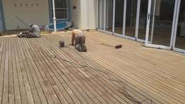 Sun Decks and Deck Maintenance