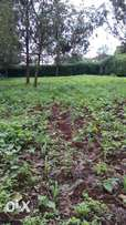 land To Let Kiambu Road