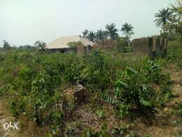 A plot of land with two bedrooms uncompleted building all ensuite