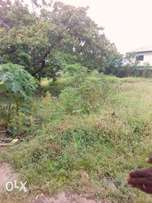 For sale: A plot of land in Alagbaka estate Akure