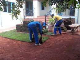 Expert Growers and Installers of Quality LM & KK Instant Lawn