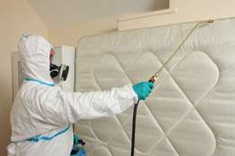 Hire Trusted Pest Control & Fumigation Experts. Ksh 500 Discount Now
