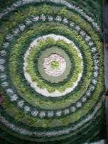 White and green rug