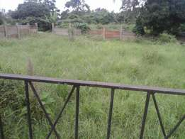 Land to let. Silver Palm Rd, Overport