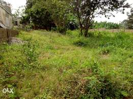 Plot of land for sale at forestry quarters,Jericho