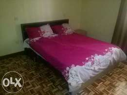Fully furnished and serviced 1 bedroom apartment to let in Hurlingham
