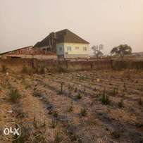 Big Plot of Land for Sale in a Serene and Accessible Environment