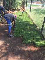 The INSTANT LAWN of your dreams - LM & Kikuyu - ZEN LAWNS