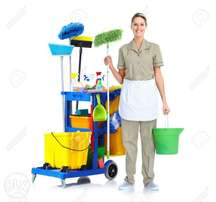 cleaner wanted arround asylum down