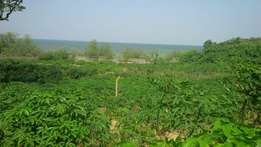 28acres on sale at kasenyi kisi touching lake shore