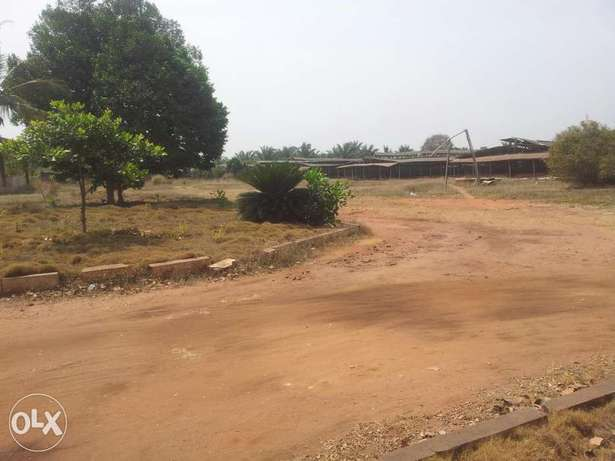 A 1000ft by 1000ft poultry farm for lease Esan North-East - image 3