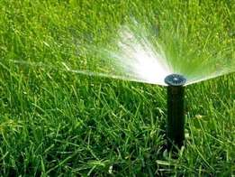 Top Quality Instant Lawn At Affordable Rates