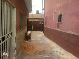 2 bedroom flat is available for rent, off ekenwan Rd (Liam's property)
