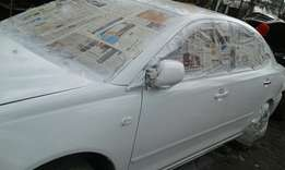 Spray painting and Buffing services