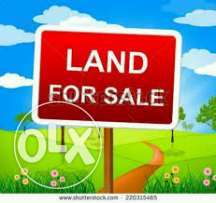 for sale 550sqm of land at alapere lagos mainland