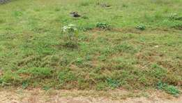 50 by 100 Plot for sale in kihara.
